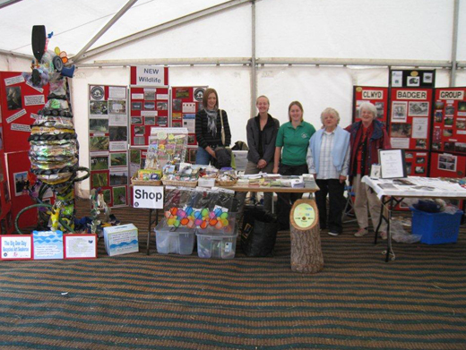 Clwyd Badger Group Fundraising Stall