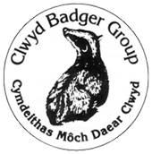 Clwyd Badger Group